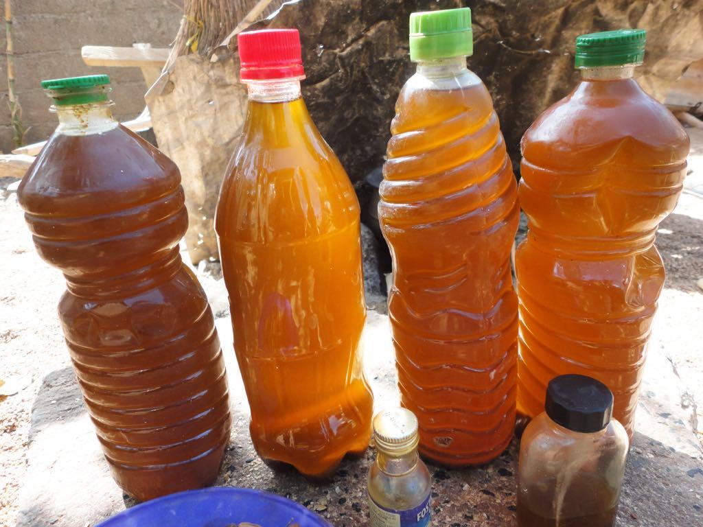 L'huile de neem lutte contre les insectes ravageurs (bruches) de légumineuses