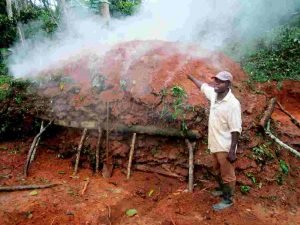 Produire le charbon de bois